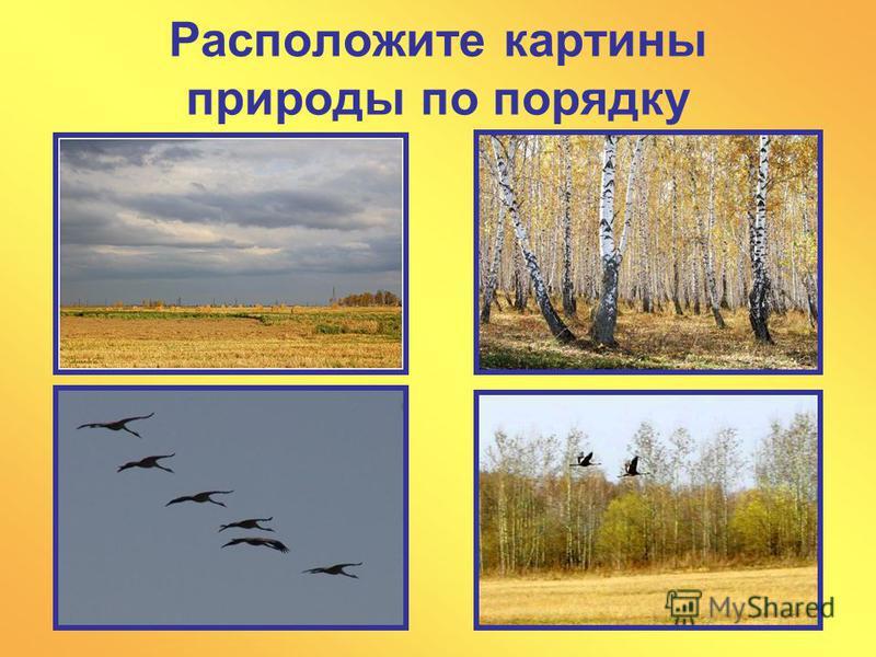 Расположите картины природы по порядку