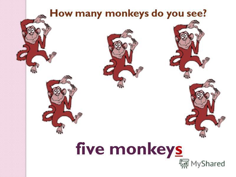 five monkeys How many monkeys do you see?