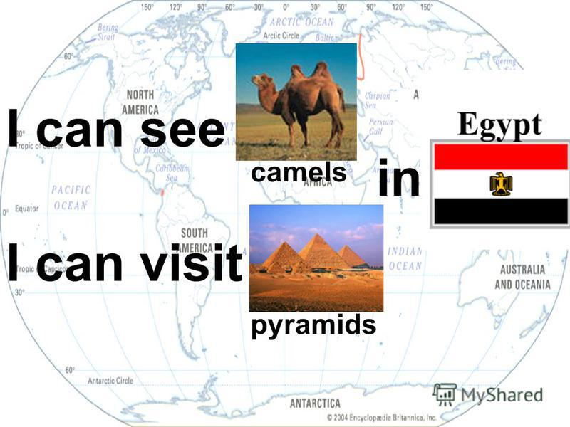 I can see I can visit in... camels pyramids