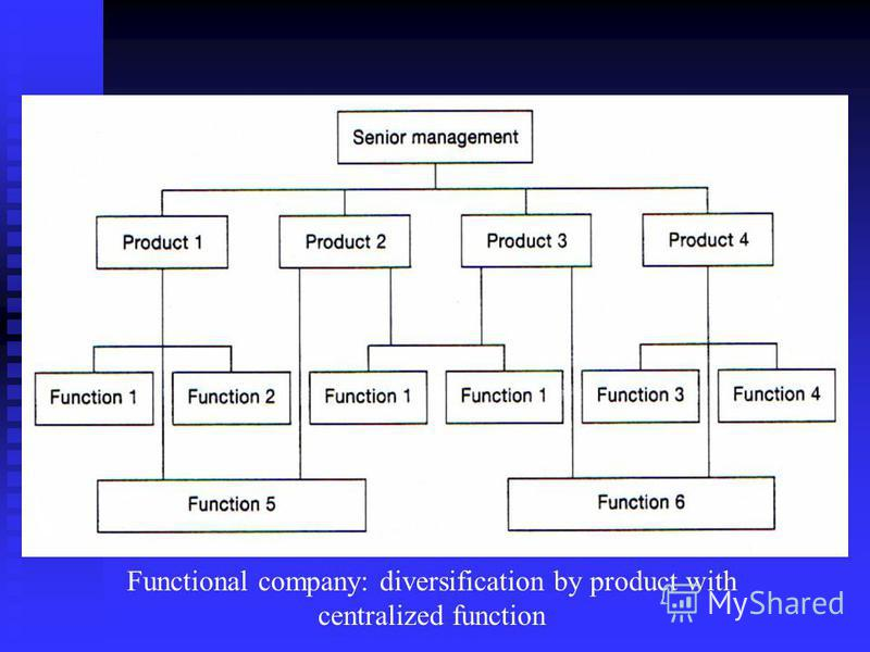 Functional company: diversification by product with centralized function
