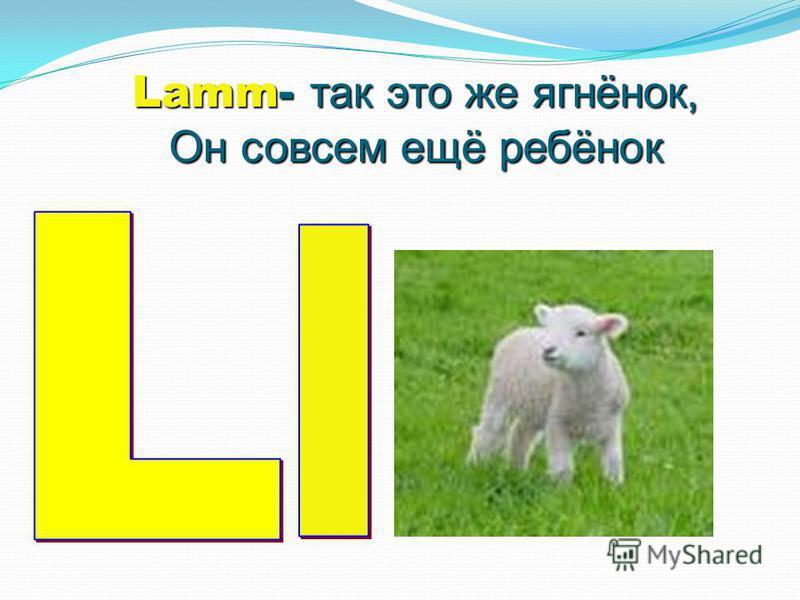 Lamm- так это же ягнёнок, Он совсем ещё ребёнок
