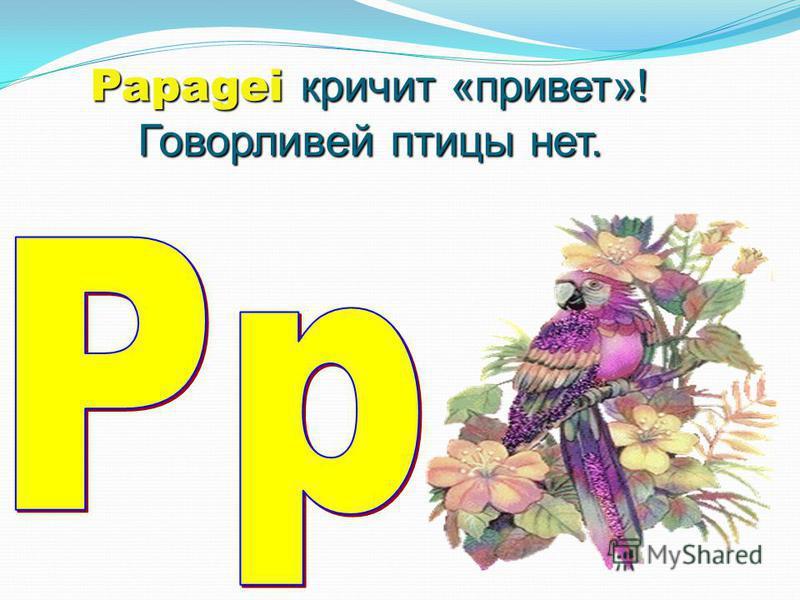 Papagei кричит «привет»! Говорливей птицы нет.