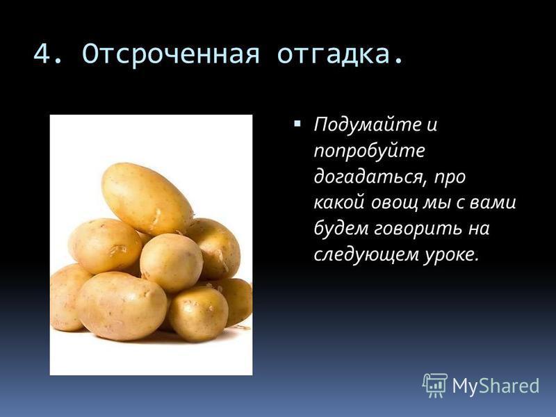 4. Отсроченная отгадка. Подумайте и попробуйте догадаться, про какой овощ мы с вами будем говорить на следующем уроке.
