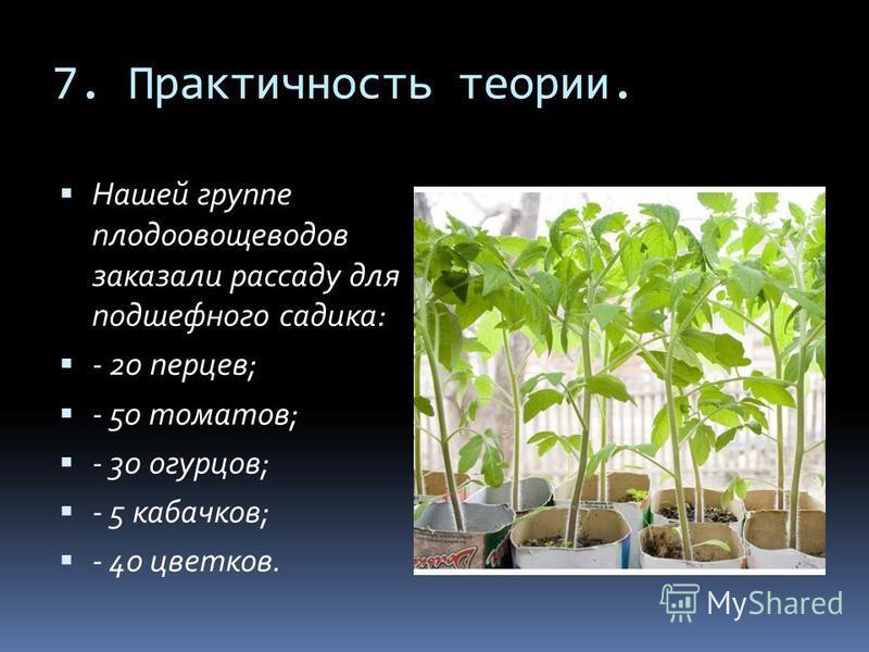 7. Практичность теории. Нашей группе плодоовощеводов заказали рассаду для подшефного садика: - 20 перцев; - 50 томатов; - 30 огурцов; - 5 кабачков; - 40 цветков.