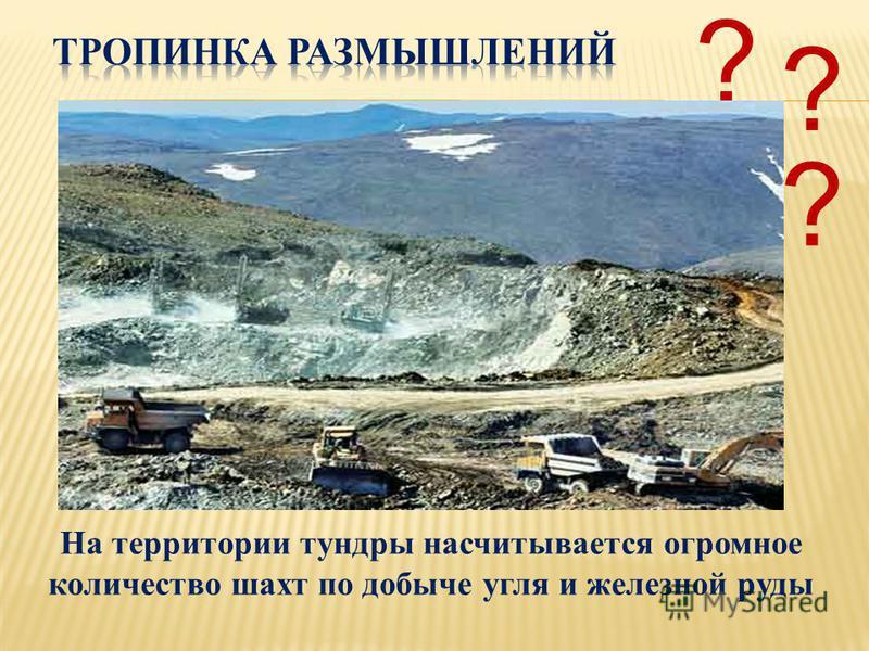 На территории тундры насчитывается огромное количество шахт по добыче угля и железной руды ? ? ?