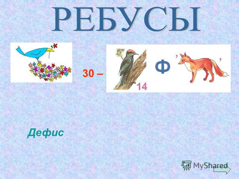 Дефис 30 –