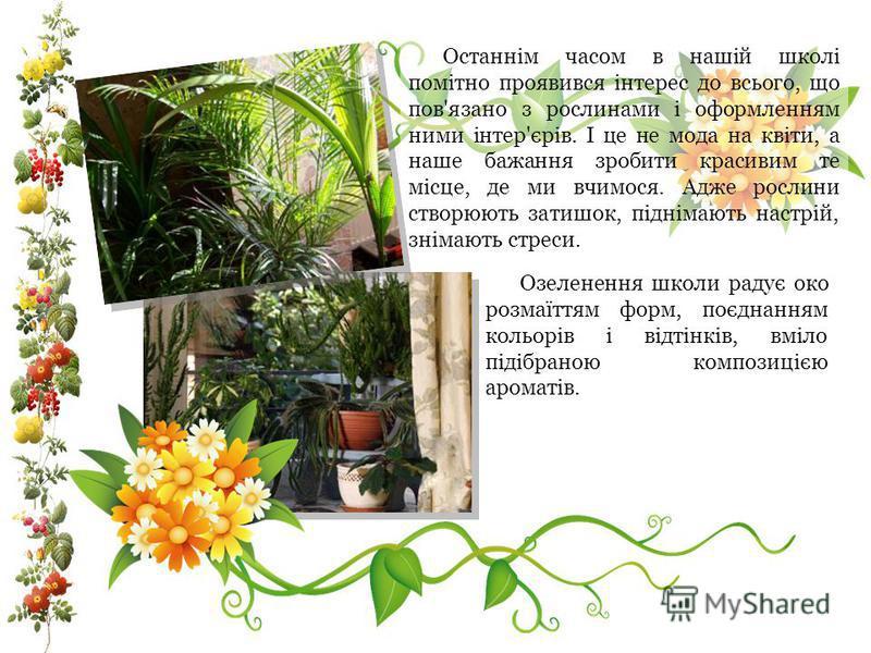 Останнім часом в нашій школі помітно проявився інтерес до всього, що пов'язано з рослинами і оформленням ними інтер'єрів. І це не мода на квіти, а наше бажання зробити красивим те місце, де ми вчимося. Адже рослини створюють затишок, піднімають настр