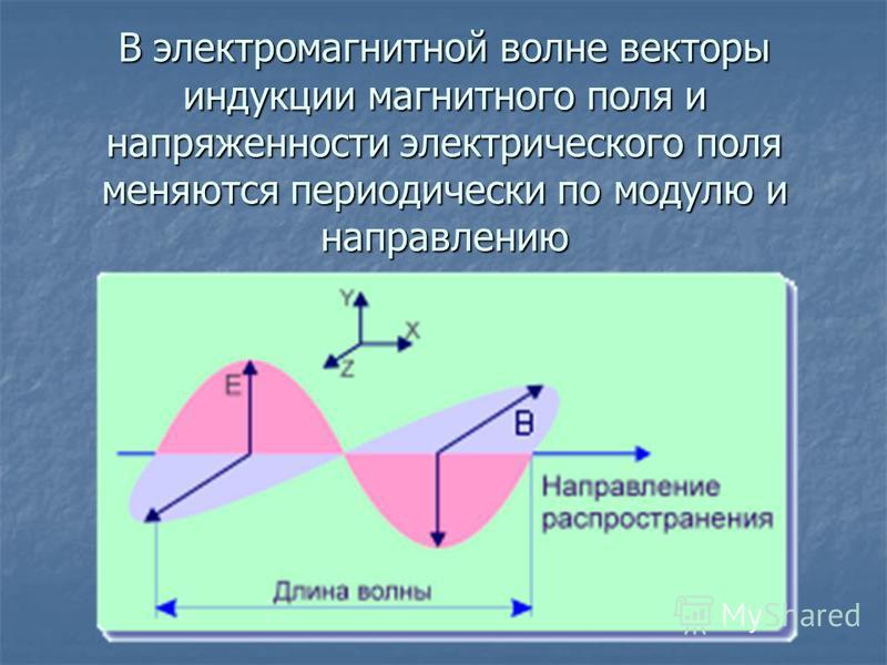 В электромагнитной волне векторы индукции магнитного поля и напряженности электрического поля меняются периодически по модулю и направлению