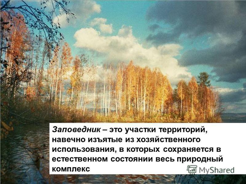 Заповедник – это участки территорий, навечно изъятые из хозяйственного использования, в которых сохраняется в естественном состоянии весь природный комплекс