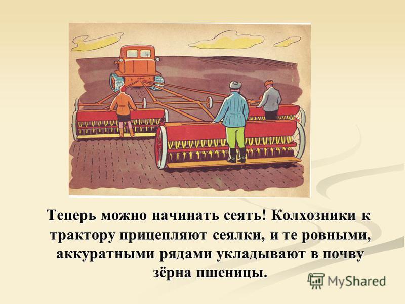 Теперь можно начинать сеять! Колхозники к трактору прицепляют сеялки, и те ровными, аккуратными рядами укладывают в почву зёрна пшеницы.