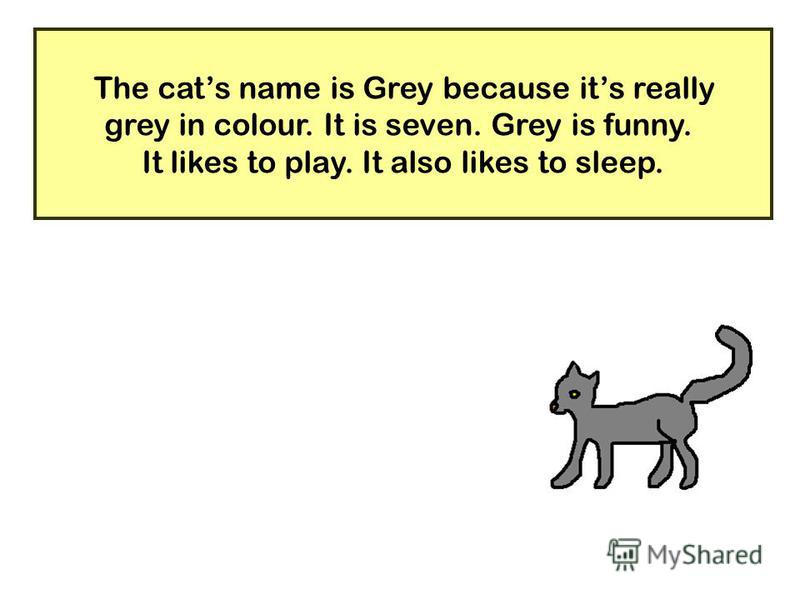 20 The cats name is Grey because its really grey in colour. It is seven. Grey is funny. It likes to play. It also likes to sleep.