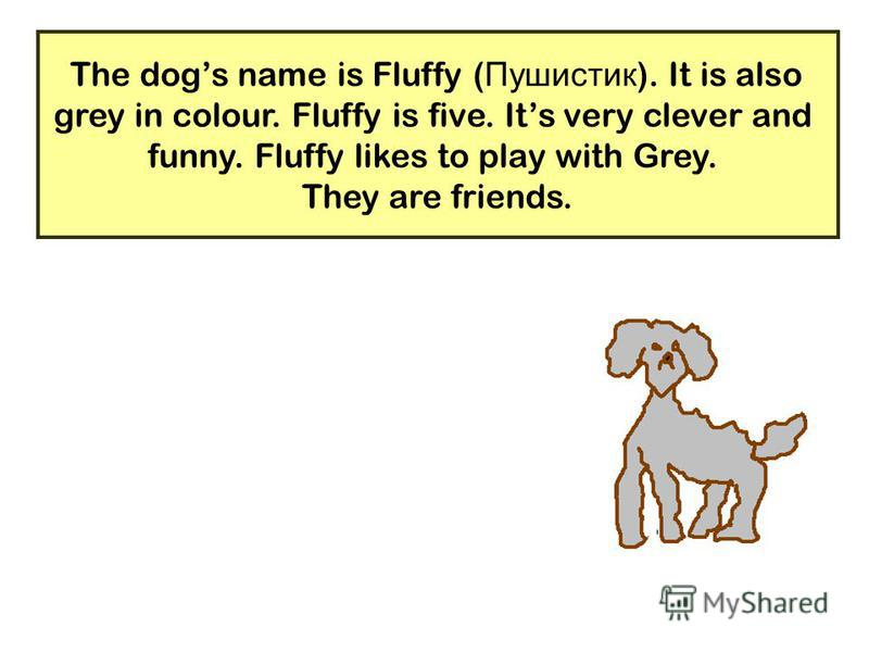 21 The dogs name is Fluffy ( Пушистик ). It is also grey in colour. Fluffy is five. Its very clever and funny. Fluffy likes to play with Grey. They are friends.