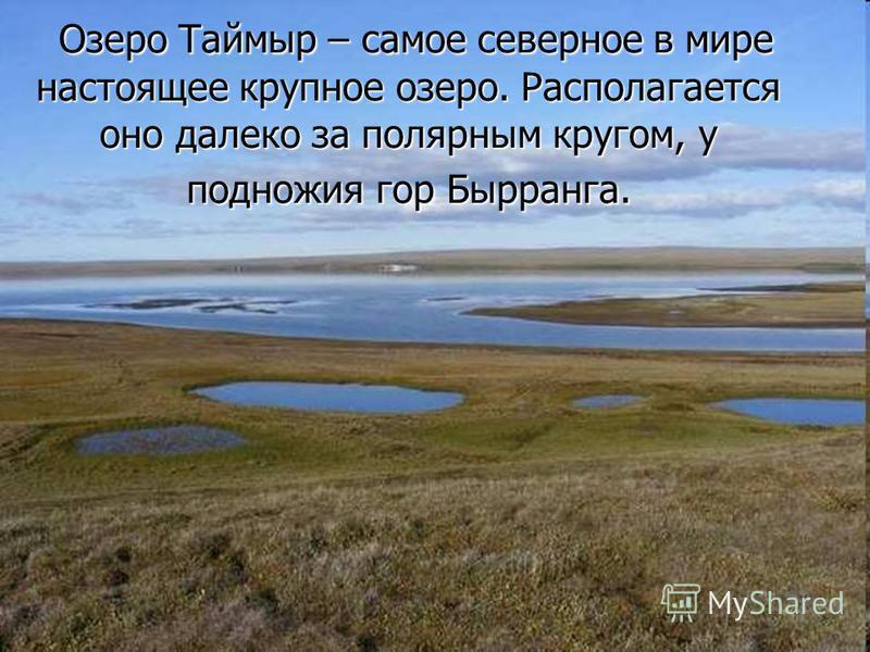 Озеро Таймыр – самое северное в мире настоящее крупное озеро. Располагается оно далеко за полярным кругом, у подножия гор Бырранга. Озеро Таймыр – самое северное в мире настоящее крупное озеро. Располагается оно далеко за полярным кругом, у подножия