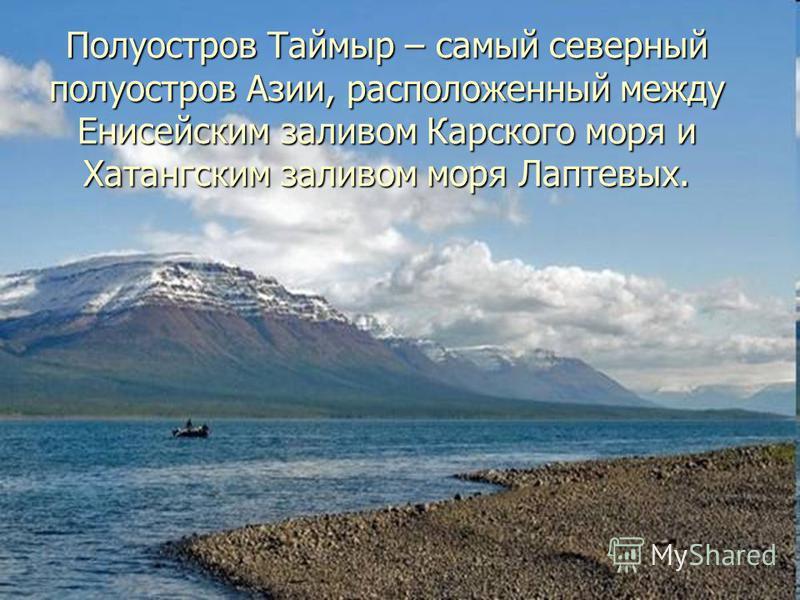 Полуостров Таймыр – самый северный полуостров Азии, расположенный между Енисейским заливом Карского моря и Хатангским заливом моря Лаптевых.