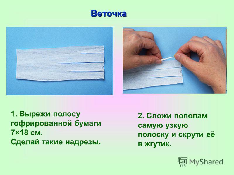 1. Вырежи полосу гофрированной бумаги 7×18 см. Сделай такие надрезы. 2. Сложи пополам самую узкую полоску и скрути её в жгутик. Веточка