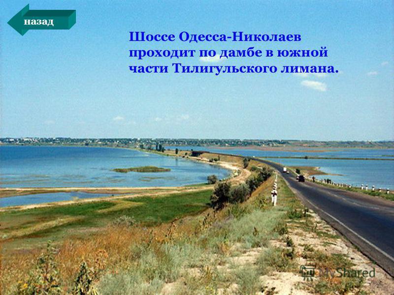 Шоссе Одесса-Николаев проходит по дамбе в южной части Тилигульского лимана. назад