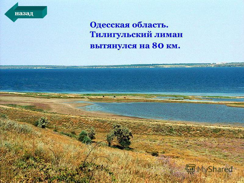 Одесская область. Тилигульский лиман вытянулся на 8 0 км. назад
