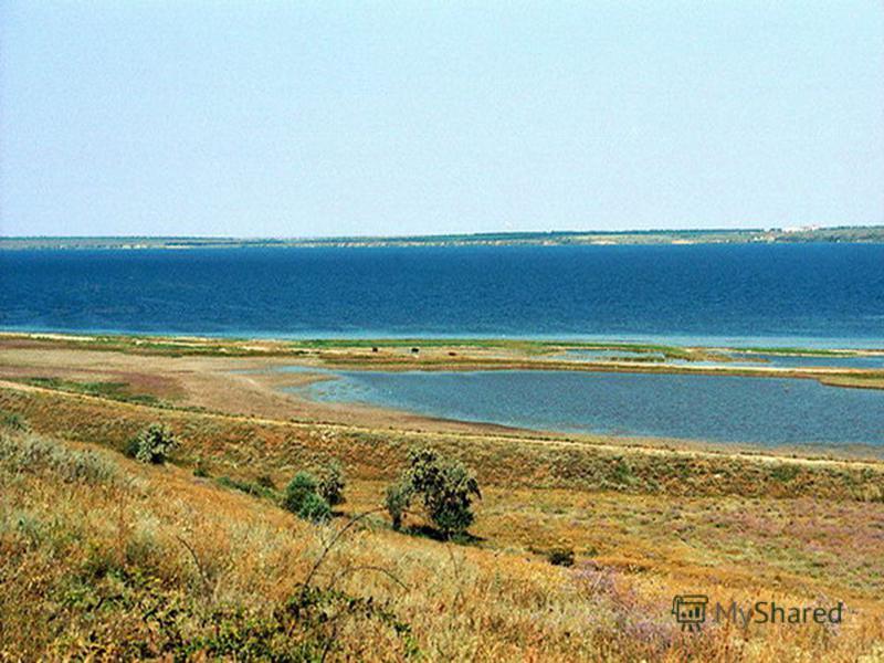 Тилигульский лиман– лиман закрытого типа расположен в долине одноименной реки на границе Одесской и Николаевской областей и отделён от моря песчано-ракушечниковой пересыпью шириной 3-4 км. Это самый протяжённый украинский лиман длина которого достига