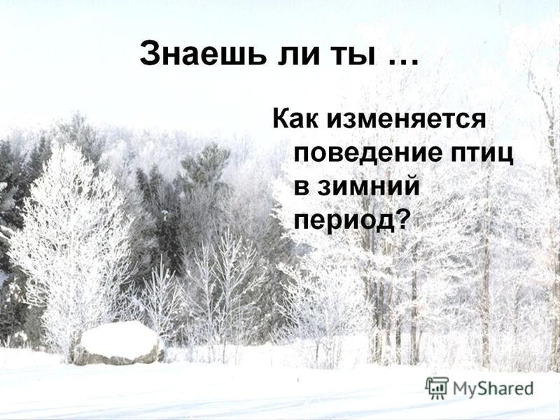 Выполнен учащимися 3 класса МОУ –СОШ 1 города Аткарска Руководитель : Орлова Л.В.