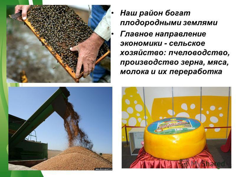 Free Powerpoint TemplatesPage 28 Наш район богат плодородными землями Главное направление экономики - сельское хозяйство: пчеловодство, производство зерна, мяса, молока и их переработка