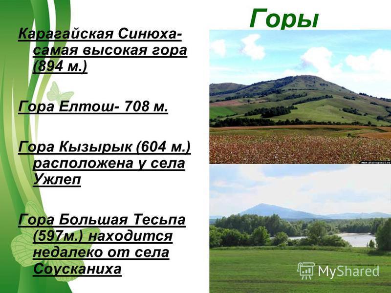 Free Powerpoint TemplatesPage 9 Горы Карагайская Синюха- самая высокая гора (894 м.) Гора Елтош- 708 м. Гора Кызырык (604 м.) расположена у села Ужлеп Гора Большая Тесьпа (597 м.) находится недалеко от села Соусканиха