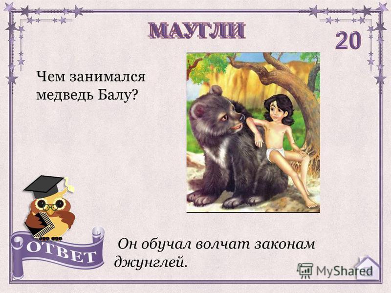 Чем занимался медведь Балу? Он обучал волчат законам джунглей.