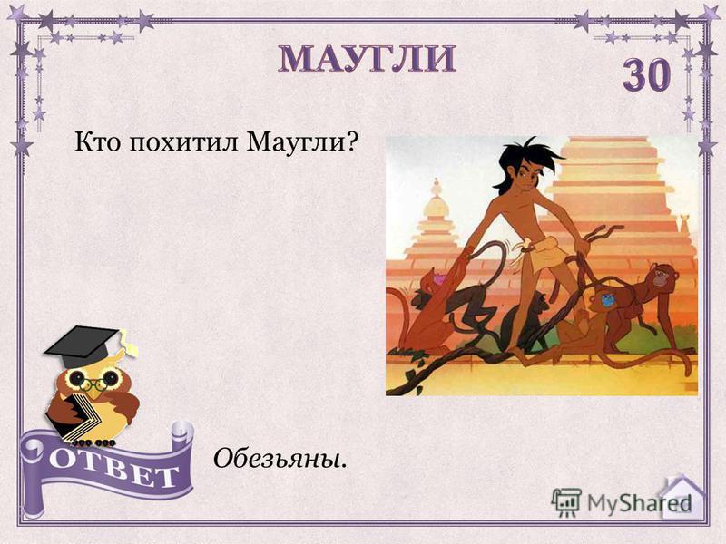 Кто похитил Маугли? Обезьяны.