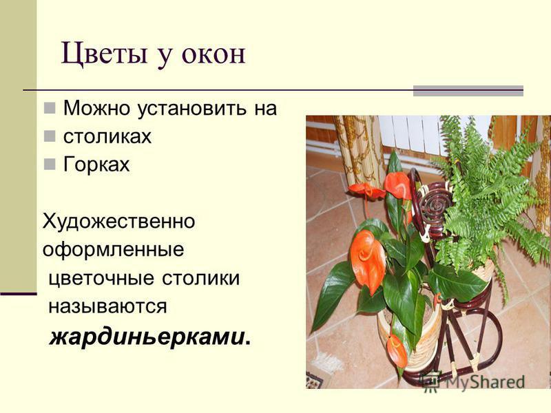 Цветы у окон Можно установить на столиках Горках Художественно оформленные цветочные столики называются жардиньерками.