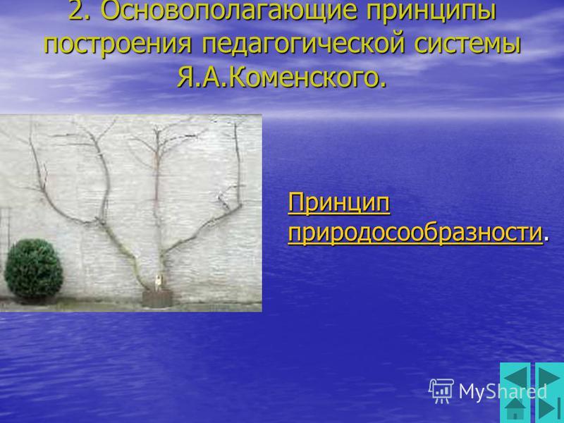 2. Основополагающие принципы построения педагогической системы Я.А.Коменского. Принцип природосообразности Принцип природосообразности. Принцип природосообразности