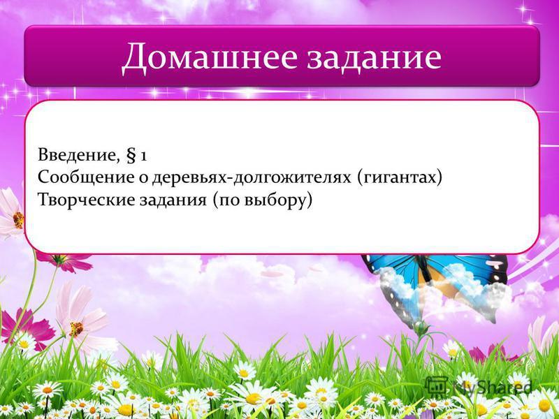 Домашнее задание Введение, § 1 Сообщение о деревьях-долгожителях (гигантах) Творческие задания (по выбору)