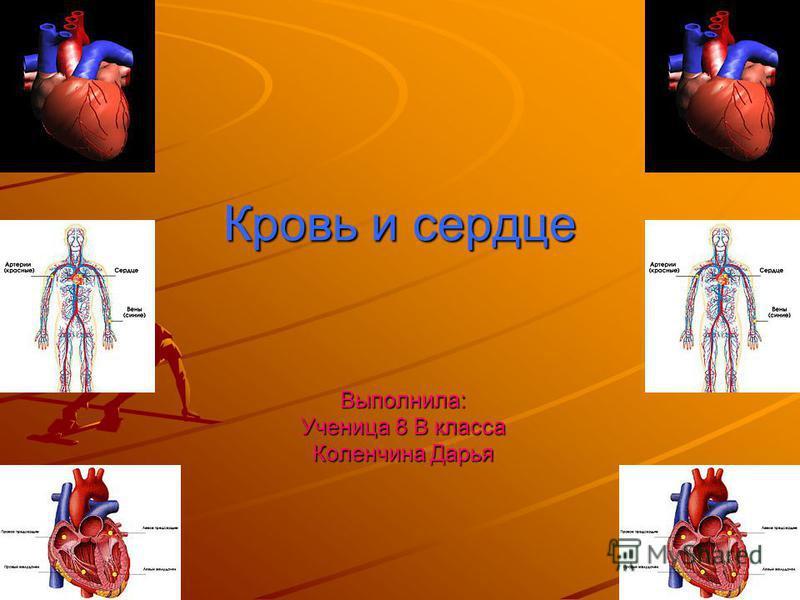 Кровь и сердце Выполнила: Ученица 8 В класса Коленчина Дарья