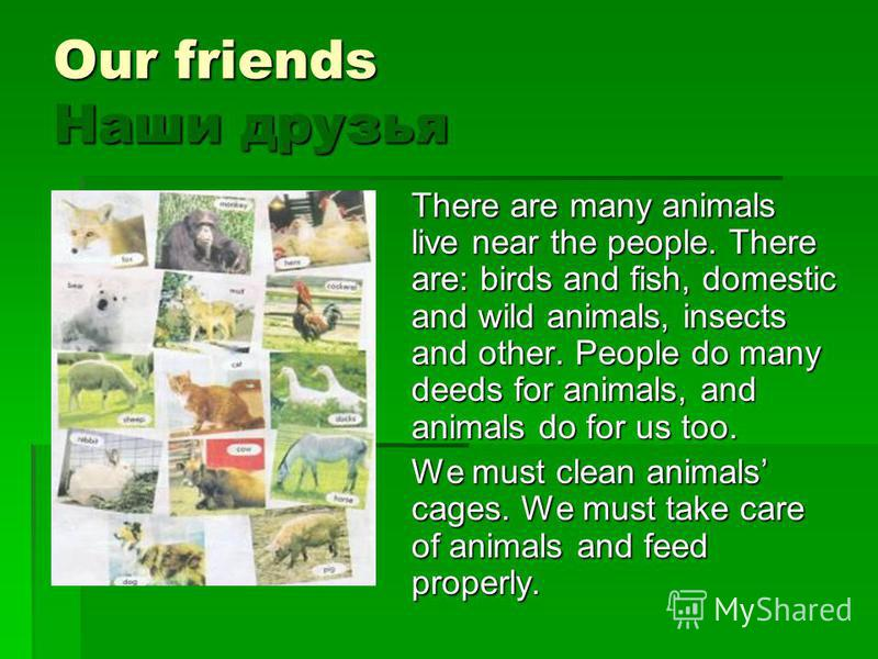 Our friends Наши друзья There are many animals live near the people. There are: birds and fish, domestic and wild animals, insects and other. People do many deeds for animals, and animals do for us too. We must clean animals cages. We must take care