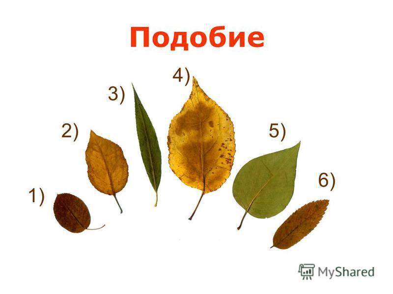 Подобие 2) 1) 3) 4) 5) 6)