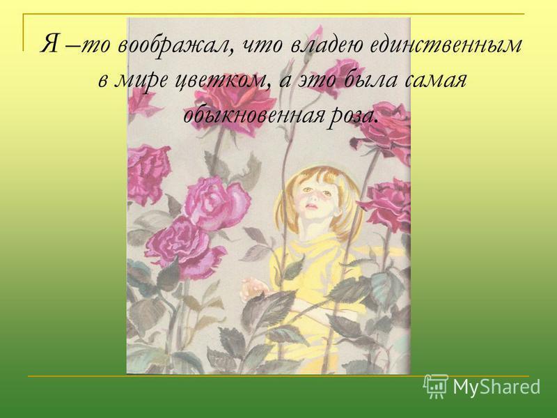 Я –то воображал, что владею единственным в мире цветком, а это была самая обыкновенная роза.