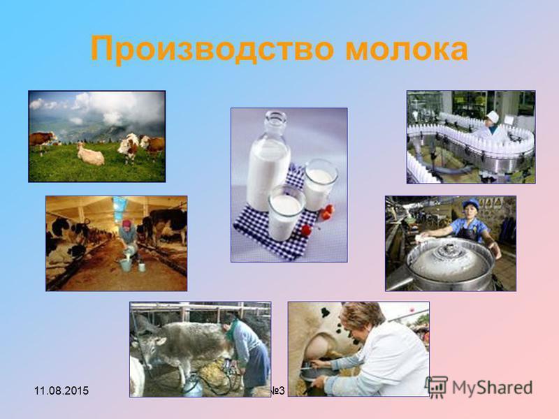 11.08.2015МОУ СОШ 3 г.Строитель Производство молока