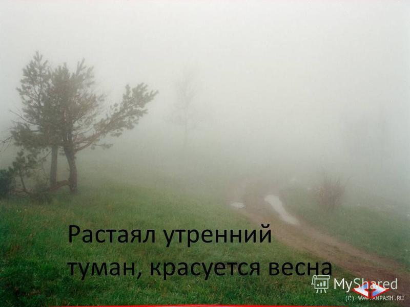 Растаял утренний туман, красуется весна