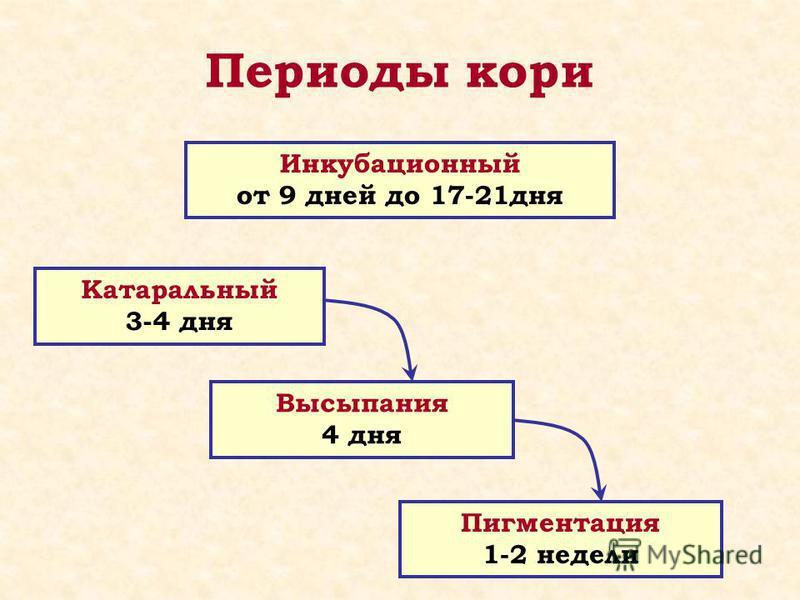 Периоды кори Инкубационный от 9 дней до 17-21 дня Катаральный 3-4 дня Высыпания 4 дня Пигментация 1-2 недели