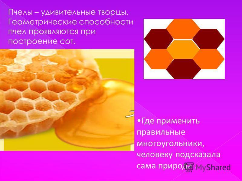 Пчелы – удивительные творцы. Геометрические способности пчел проявляются при построение сот. Где применить правильные многоугольники, человеку подсказала сама природа.