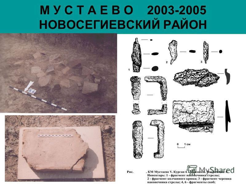 М У С Т А Е В О 2003-2005 НОВОСЕГИЕВСКИЙ РАЙОН