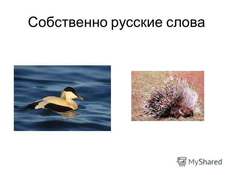 Собственно русские слова