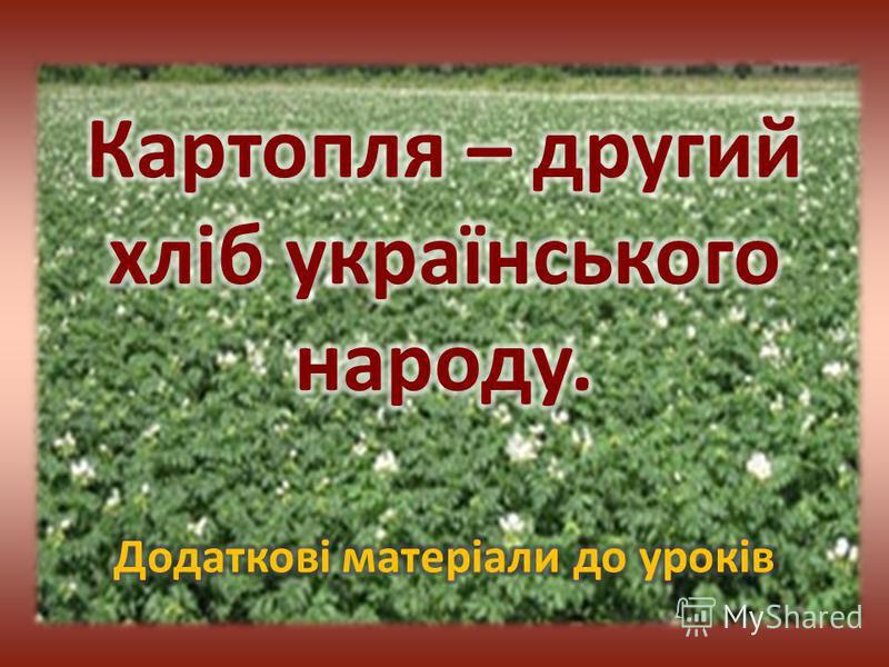 Картопля - травяниста рослина