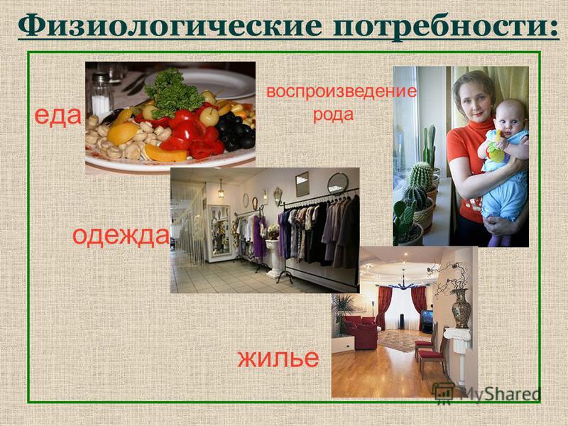 Физиологические потребности: еда одежда жилье воспроизведение рода
