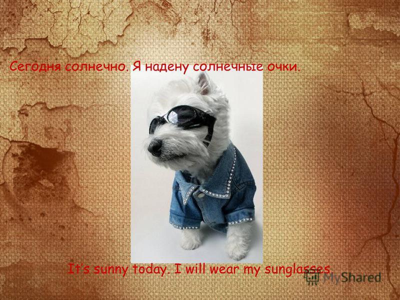 Сегодня солнечно. Я надену солнечные очки. Its sunny today. I will wear my sunglasses.