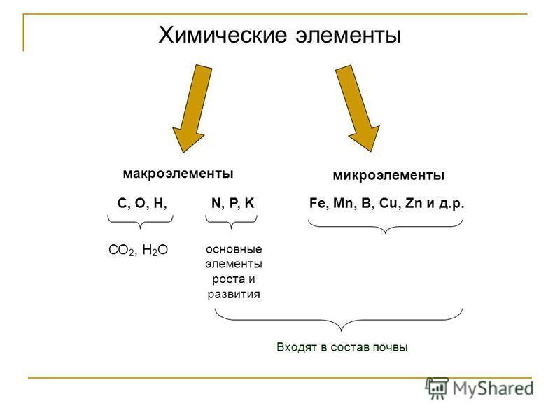 Химические элементы макроэлементы микроэлементы С, О, Н,N, P, KFe, Mn, B, Cu, Zn и д.р. СО 2, Н 2 О основные элементы роста и развития Входят в состав почвы