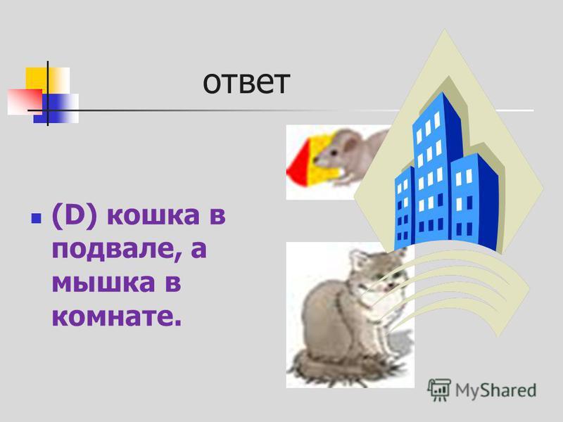 ответ (D) кошка в подвале, а мышка в комнате.