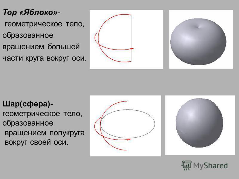 Тор «Яблоко»- геометрическое тело, образованное вращением большей части круга вокруг оси. Шар(сфера)- геометрическое тело, образованное вращением полукруга вокруг своей оси.