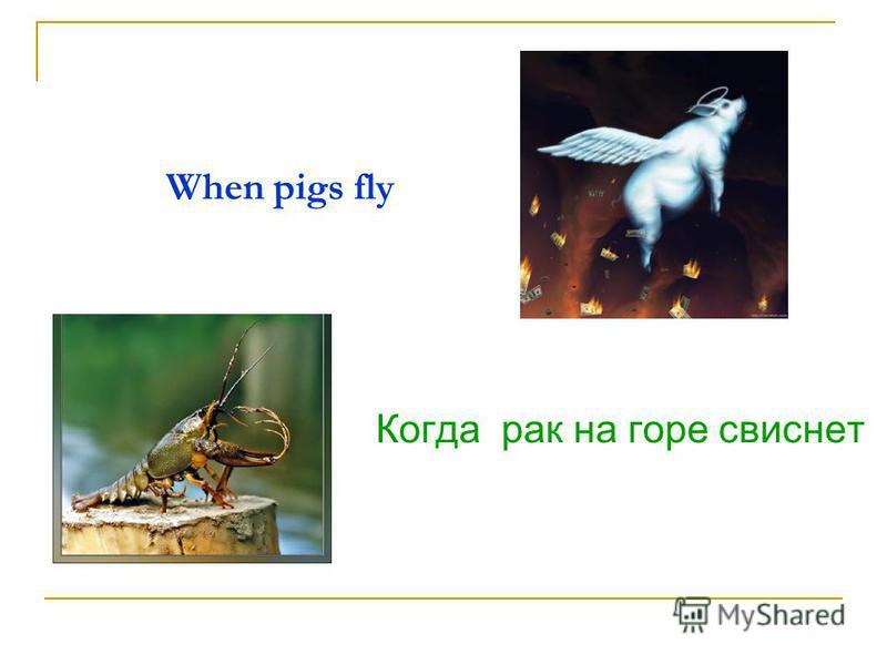 When pigs fly Когда рак на горе свиснет