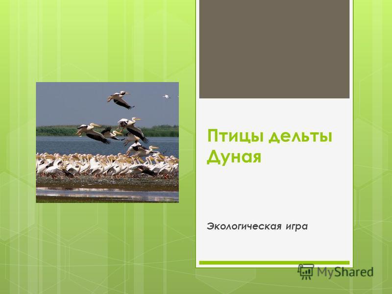 Птицы дельты Дуная Экологическая игра