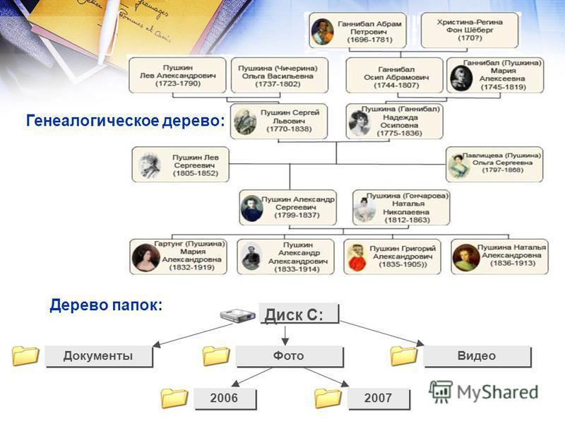 Диск C: Документы Видео 2006 2007 Дерево папок: Фото Генеалогическое дерево: