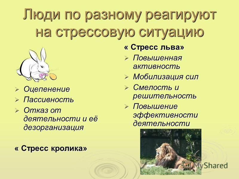 Люди по разному реагируют на стрессовую ситуацию Оцепенение Оцепенение Пассивность Пассивность Отказ от деятельности и её дезорганизация Отказ от деятельности и её дезорганизация « Стресс кролика» « Стресс льва» Повышенная активность Повышенная актив